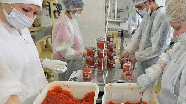 Работа в Германии на фабрике по упаковкe икры