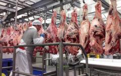 мясокомбинат обвальщики мяса