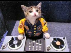 DJ!!!